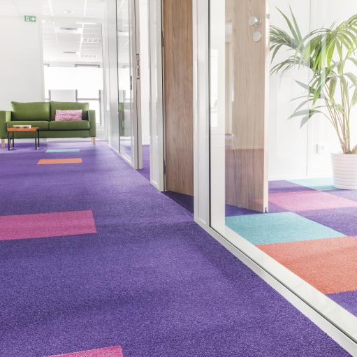 4768 roomset carpet bolero 155 485 555 895 purple 2